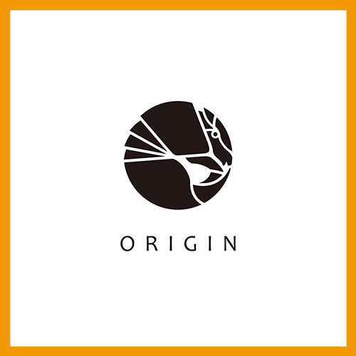 Origin 起源